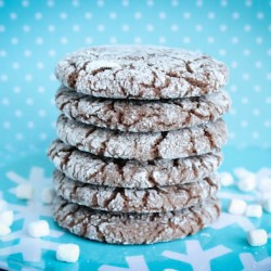 Hot Cocoa & Marshmallow Crinkle Cookies