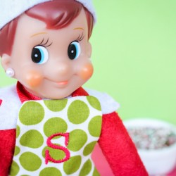 Elf On The Shelf Cookies – By Sprinkles the Elf!
