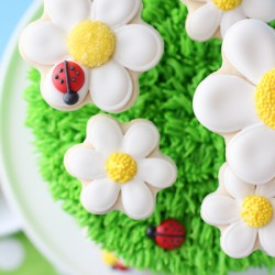 Popping Up Daisies Cake