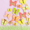 ButterflyCookies (5 of 3)